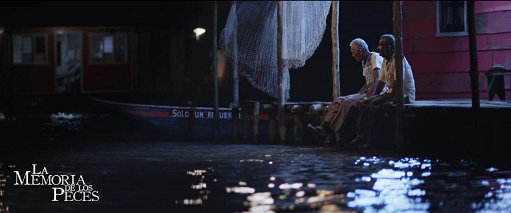 la-memoria-de-los-peces-noche